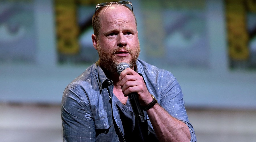 Joss Whedon stated that it took him months to realize he really didn't have a story for Batgirl!